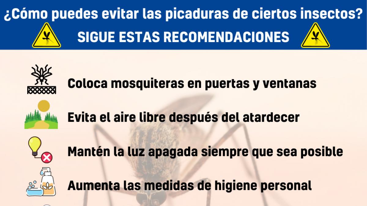 Recomendaciones para prevenir picaduras de mosquito ante los casos de meningoencefalitis en Sevilla