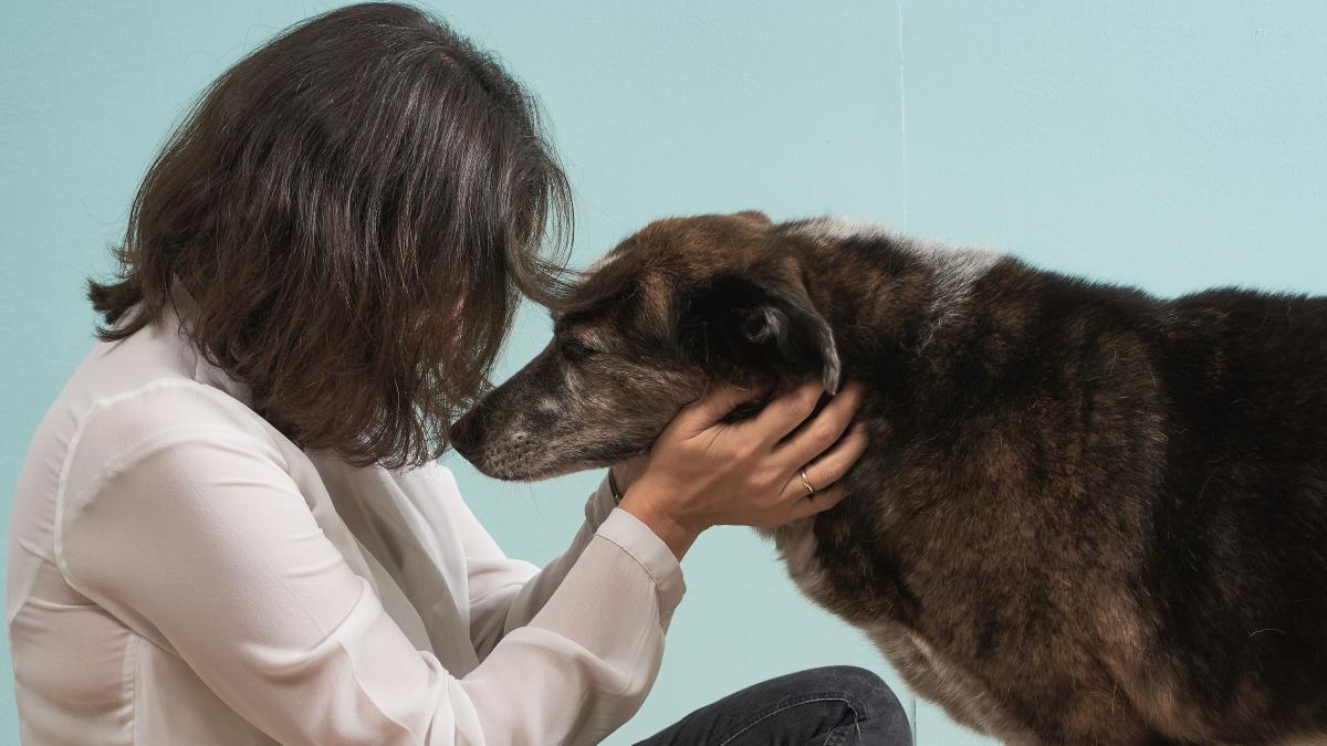 """Jaume Fatjo: """"Los perros y los gatos son una gran fuente de apoyo emocional, sobre todo en momentos de dificultad"""""""