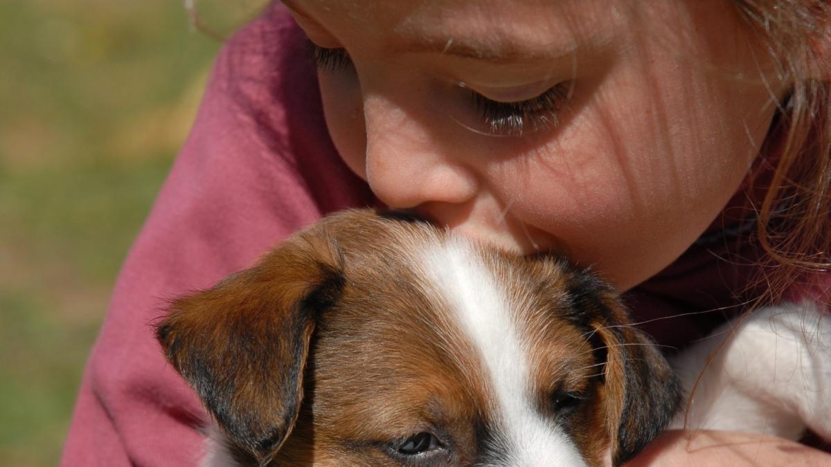 ¿Como enseñar a un cachorro a hacer sus necesidades fuera de casa? ¿Cuando empezar? ¿Hay algun truco?